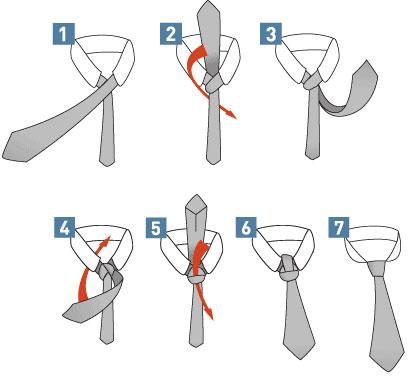 способ как правильно завязать галстук в картинках узел Виндзор