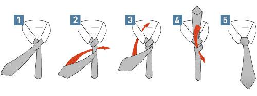 способ как правильно завязать галстук в картинках Принц Альберт
